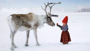 anja_and_the_reindeer-675x387